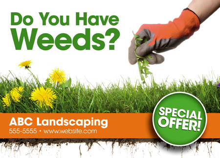 sample landscaping postcard