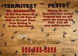 termite control marketing sample