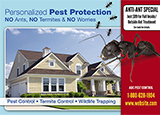 Pest Control Marketing Example