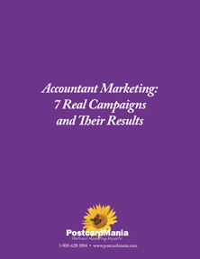 Accountant Marketing: 7 Real Campaigns & Their Results