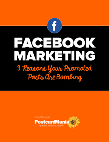 Using Promoted Posts on Facebook to Generate Revenue for Small Businesses